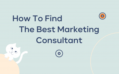 How to Find the Best Marketing Consultant?